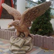 Орёл на скале фото
