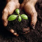 Анализ грунтов, почв и вод фото