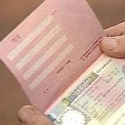 Шенгенские визы фото