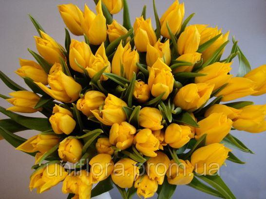 Купить искусственные цветы оптом в крыму где купить цветы гладиолусы в москве