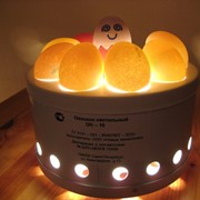 Овоскоп на 10 яиц - ОН-10 фото