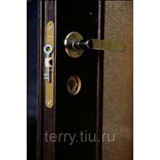 Дверь в комплекте фото
