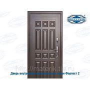 Дверь внутренняя металлическая левая Форпост 2 замка В-1 63мм проем-860х2050мм фото