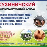 Комбикорм, в том числе по рецептуре заказчика, для предприятий птицеводства, свиноводства, рыбоводства, КРС и МРС фото