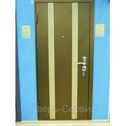 Стальные двери в Ростове фото