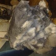Покупка, вычинка шкур кролика фото