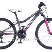 Велосипед Author A-Matrix ASL 24 , серый-розовый, рама 11,5 фото