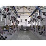 Разработка и строительство доильных комнат по европейским стандартам. фото