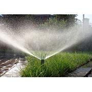 Установка автополива газона растений сада усадьбы в Молдове! фото
