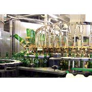 Машины и оборудование для винодельческой промышленности фото