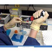 Технические исследования для университетов! фото