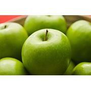 Экспорт яблока. фото