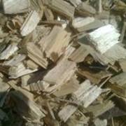 Кора, щепа, лыко, опилки древесные фото