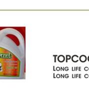 Антифриз Topcool Long Life Coolant фото