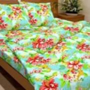 Ткань постельная Бязь 142 гр/м2 150 см Набивная цветной 3806-2/S385 TDT фото