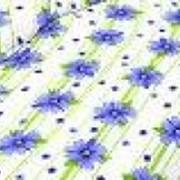 Ткань постельная Бязь 136 гр/м2 150 см Набивная цветной 2148-1/S501 FL фото