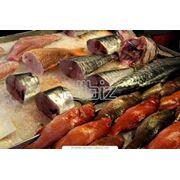 Рыба деликатесная фото