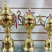Набор кубков (трофеи), наградные 2031 фото