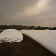 Рукава (мешки) для хранения зерновых и кормов фото
