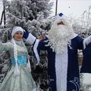 Дед мороз и снегурочка, новогодние елки фото