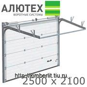 Ворота гаражные секционные АЛЮТЕХ /Alutech Classic 2500x2100/ фото