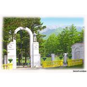 Поездки на курорт Аршан фото