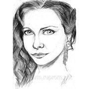 Рисунок карандашом. фото