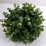 Искусственный шар из травы с белыми ягодами, d 40 см фото