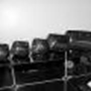 Ковш норийный 260 мм (3 болта) фото