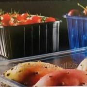 Пинетки(контейнеры, лотки) 500 гр. фото
