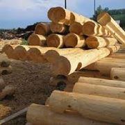 Сушка древесины в Молдове фото