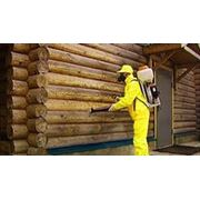 Антисептирование древесины в Молдове фото