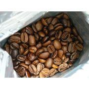 Кофе арабика фото