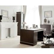 Мебель для кабинетов. фото