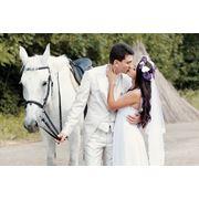 Свадебный фотограф - Friptuleac Roman фото