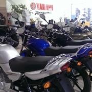 Мотоцикл YBR-125 YAMAHA фото