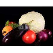 Овощи органические фото