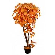 Искусственное дерево Дуб Сави (Код товара: 41874) фото