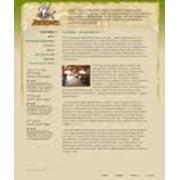 Разработка web-сайтов, web-дизайн фото