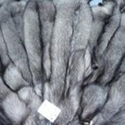 Мех натуральный норки, песца, чернобурки, енота, блуфроста. Оптовые цены. фото