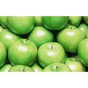 Зимние сорта яблок фото