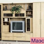 Мебель для гостиной Маэстро фото