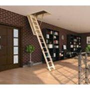 Лестница чердачная Факро фото