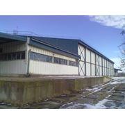 Продается здание - холодильник в г. Рени фото