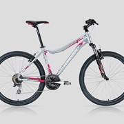 Велосипед Forward 1410 Lady фото
