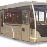 Автобус низкопольный МАЗ 171 фото