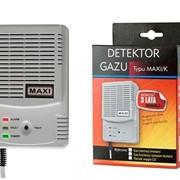 Сигналізатор газів MAXI/K фото