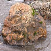 Валун 100-150 кг. фото
