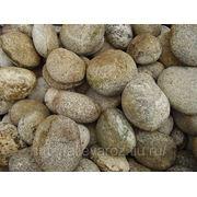 Валун кварцитовый (Картошка). фото