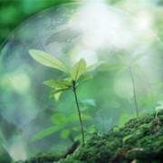 Охрана окружающей среды и другие специальные разделы фото
